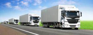 cargo-transport-service